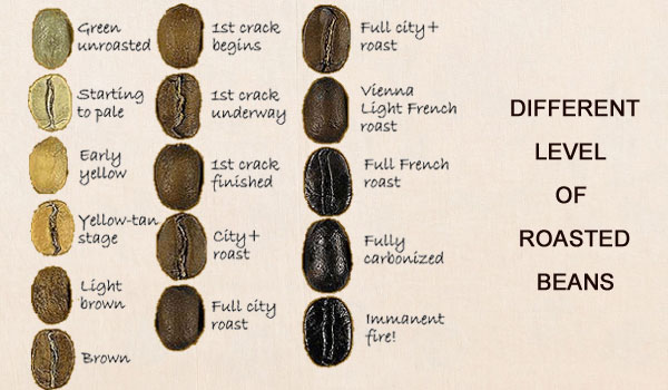 different-roasts-of-coffee