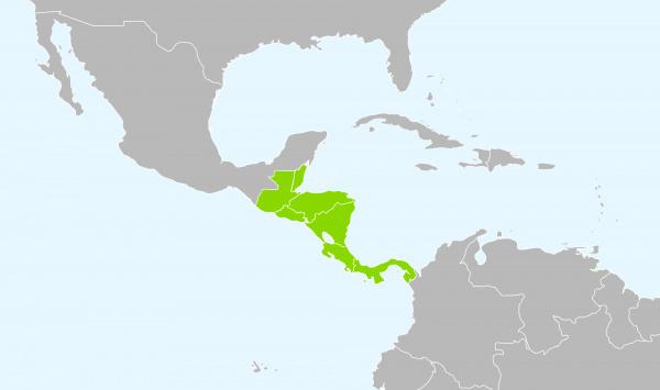 Central_America