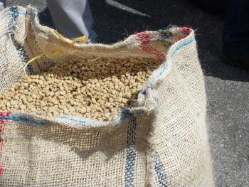 beans%20bag